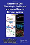 img - for Endothelial Cell Plasticity in the Normal and Injured Central Nervous System book / textbook / text book