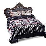 "JML Lightweight Cozy Super Soft Microplush Flannel Fleece Blanket, Extra Soft Brush Fabric, Super Warm Bed Blanket ( King 90"" x 102"", Black)"