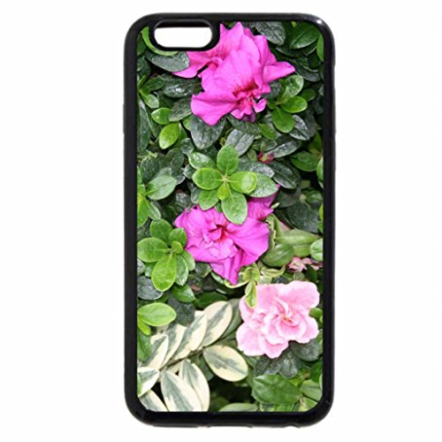iPhone 6S / iPhone 6 Case (Black) A great day to visit Edmonton Pyramids 25