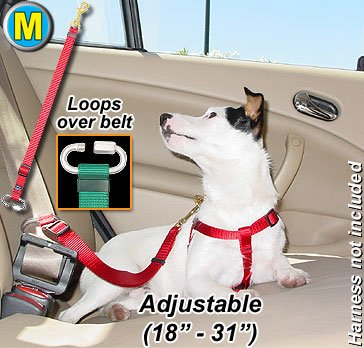 Seat Belt Tethers Medium Baby bluee Tether your pet in the car
