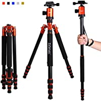 Zomei Z818 65-inch Lightweight Camera Tripod Monopod, Aluminum Portable Detachable Monopod, 360 degree Ball Head, 1/4 Quick Release Plate with Carrying Bag for Canon Nikon Sony Load (Orange)
