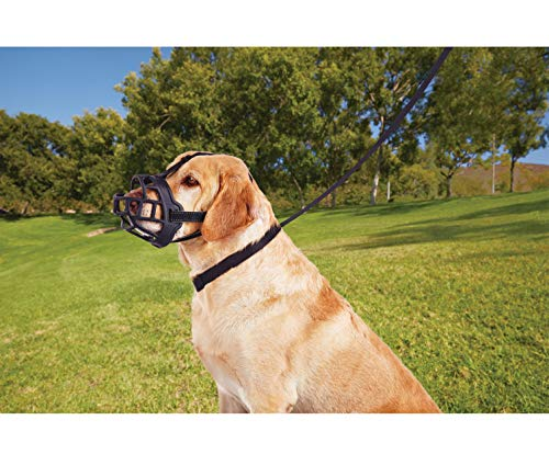 Image of Dog Muzzle,Soft Basket Silicone Muzzles for Dog, Best to Prevent Biting, Chewing and Barking, Allows Drinking and Panting, Used with Collar (1 (Snout 7-8