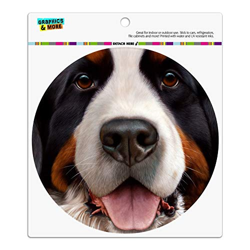 - Graphics and More Bernese Mountain Dog Face Closeup Automotive Car Refrigerator Locker Vinyl Circle Magnet