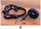 NEO Home No-Pull Dog Leash Harness, Adjustable Heavy Duty Denim Top Quality Leash Collar for Large/Medium/Small/Extra-Small Pet Perfect Lightweight Training & Walking!