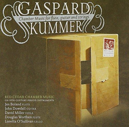 Kummer: Chamber Music for Flute Guitar & Strings by Fleur De Son (2011-04-26)