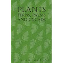 Plants - Ferns, Palms and Cycads