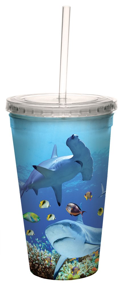 Tree-Free Greetings CC98932 Cool Cups, Double-Walled Pba Free with Straw and Lid Travel Insulated Tumbler