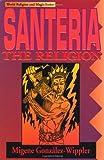 Santeria: The Religion (World religion & magic)