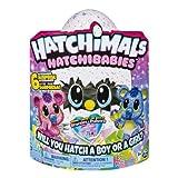 Hatchimals HatchiBabies Œuf à couver Koalabee avec bébé interactif (les styles peuvent varier) À partir de 5 ans