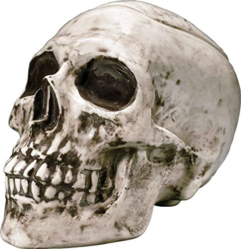 7 Inch Human Zombie Skeleton Head Skull Replica Aged Relic Bone Shaped Ceramic Candy Cookie Jar Statue Figurine Kitchen and Dining Made in USA -