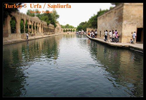 Turkey 5 Urfa/SanliUrfa: On the Same Planet