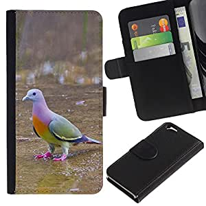 Graphic Case / Wallet Funda Cuero - Dove Green Ornithology - Apple iPhone 6 4.7