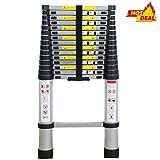 WolfWise 4.7M EN131 Telescoping Ladder, Aluminum Telescopic Extension Tall Multi Purpose Loft Ladder, 330 pound/150 kg Black (4.7M)