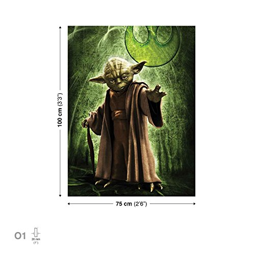 Star Wars Meister Yoda Leinwand Bilder (PPD709O1FW)