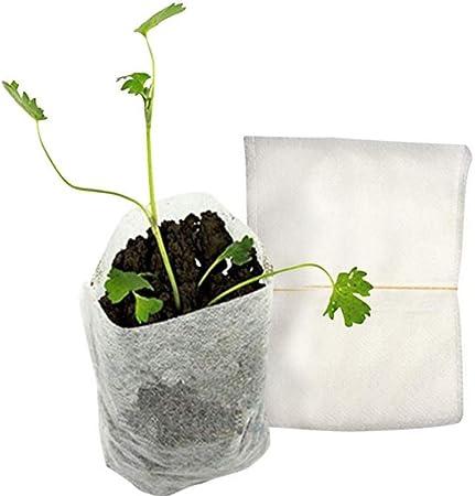 100 bolsas de semillas para guardería, biodegradables, no tejidas ...