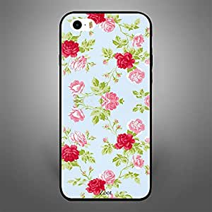 iPhone 5S Pink and Red Roses