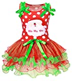 HenzWorld Santa Claus Christmas Dress Girls Birthday Party Cosplay Outfit 3t