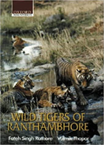 wild-tigers-of-ranthambore