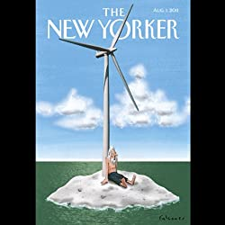 The New Yorker, August 1st 2011 (Suketu Mehta, Wendell Steavenson, Hendrik Hertzberg)