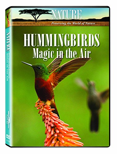 UPC 033937039041, Nature: Hummingbirds - Magic in the Air
