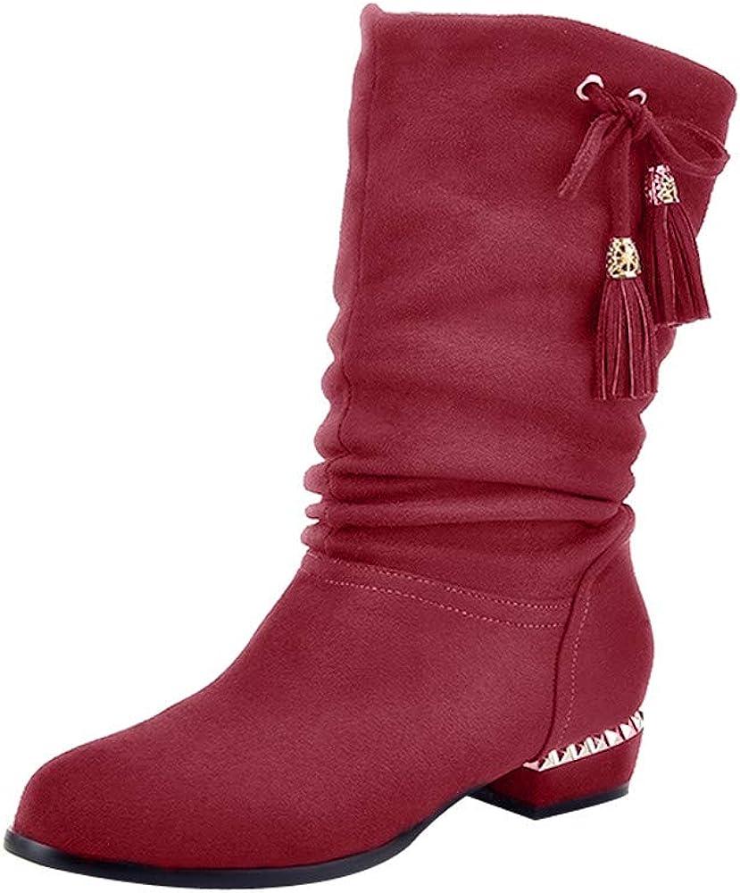 Baigoods Womens Knee Flat Shoes Decorative Keep Warm Ladies Ankle Long Tassel Boots