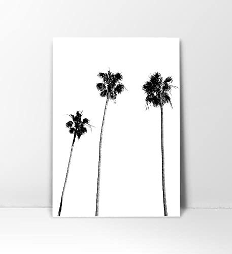 Palm tree print palm print palm tree photography black and white palm