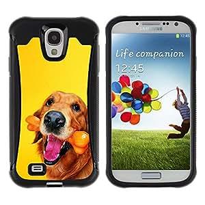 Suave TPU Caso Carcasa de Caucho Funda para Samsung Galaxy S4 I9500 / Golden Labrador Retriever Chocolate Dog / STRONG