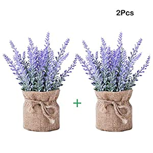 YAPASPT 2 Pack Small Burlap Potted Lavender Flowers - Artificial Fake Flower and Plant Flocked Charming Purple for Warm and Loving Home or Venue Decor 57