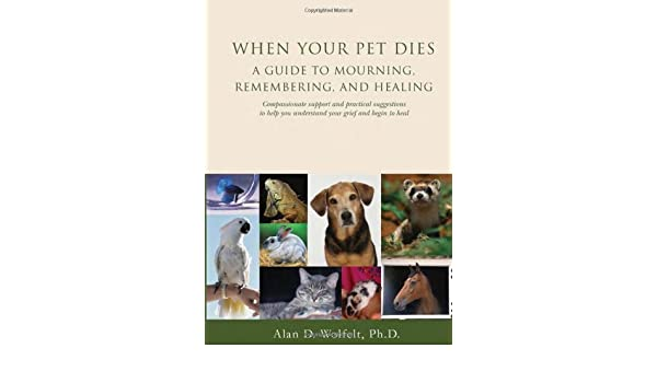 When your pet dies a guide to mourning remembering and healing when your pet dies a guide to mourning remembering and healing ebook alan d wolfelt phd amazon kindle store fandeluxe Document