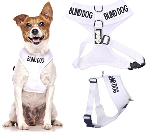 BLIND DOG (Dog Has Limited/No Sight) White Color Coded Non-Pull Front and Back D Ring Padded and Waterproof Vest Dog Harness PREVENTS Accidents By Warning Others Of Your Dog In Advance (S)