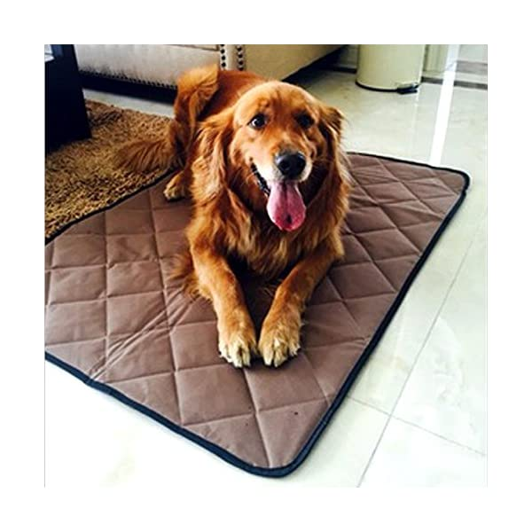 "Paw Essentials 17.7"" X 23.6"" Oxford Fabric Waterproof Pet/Dog/Cat Mat For Home, Car, Outdoors   (Color: Brown, Size: Small)"
