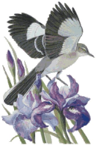 Tennessee State Bird (Northern Mockingbird) and Flower (Purple Iris) Counted Cross Stitch Pattern