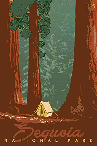 Sequoia National Park, California - Redwood Forest View - Sequoias and Tent (9x12 Art Print, Wall Decor Travel Poster)