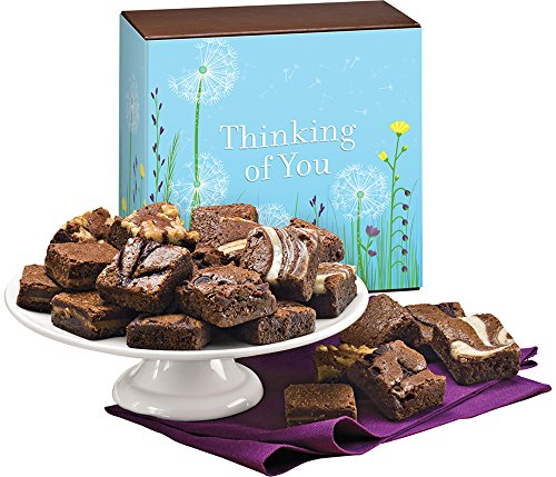 Fairytale Brownies Thinking of You Magic Morsel 24 Gourmet Food Gift Basket Chocolate Box - 1.5 Inch x 1.5 Inch Bite-Size Brownies - 24 Pieces