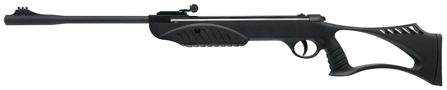 Ruger Explorer Air Rifle