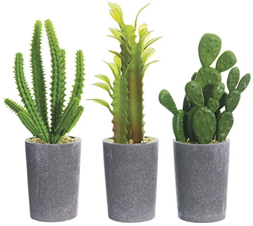 Set Artificial Potted Cacti inches product image