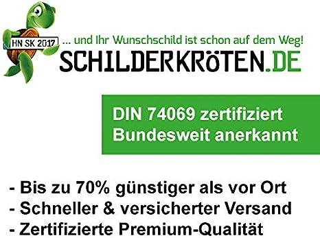 3 x Schilderkr/öten KFZ-Kennzeichen 520x110mm f/ür Auto und Fahrradtr/äger