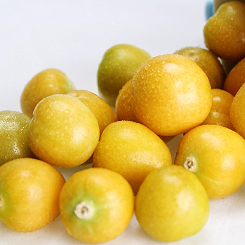 - 100pcs Physalis Peruviana Delicious Fruit Golden Berry Seeds Chinese Lattern Plant Gooseberry Bonsai Plant Easy Grow Fruit Seeds