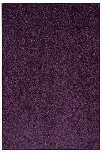 Ambiant Broadway Collection Pet Friendly Area Rug Purple – 3 x5
