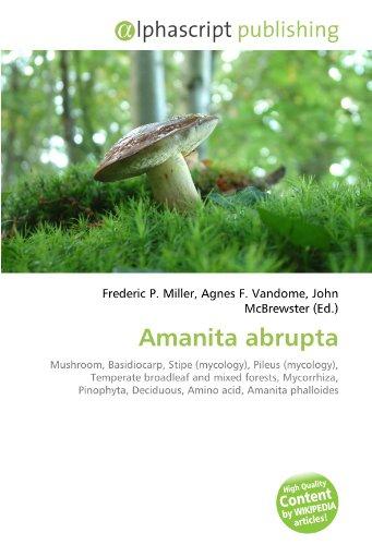 Amanita abrupta: Mushroom, Basidiocarp, Stipe (mycology), Pileus (mycology), Temperate broadleaf and mixed forests, Mycorrhiza, Pinophyta, Deciduous, Amino acid, Amanita phalloides
