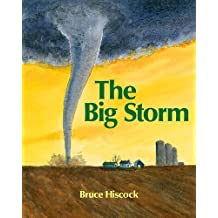 The Big Storm by Bruce Hiscock (2008-08-01)