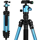 Mactrem Camera Tripod, 62.5 Lightweight Alluminum Alloy DSLR tripod ball head Travel Tripod, Detachable Monopod, Carry Case for Video/Projector Tripods, ( Load: 33lbs, Weight: 2.9lbs) Blue CT62