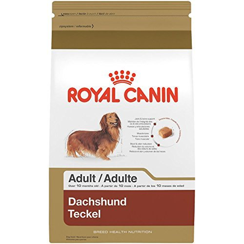 ALTH NUTRITION Dachshund Adult dry dog food, 2.5-Pound by Royal Canin (Royal Canin Dachshund)