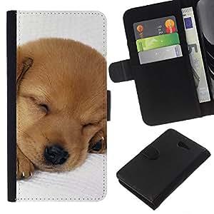 Puppy Labrador Retriever Light Brown Dog - la tarjeta de Crédito Slots PU Funda de cuero Monedero caso cubierta de piel Sony Xperia M2