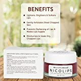 Bella Vita Organic NicoLips Lip Balm Scrub For