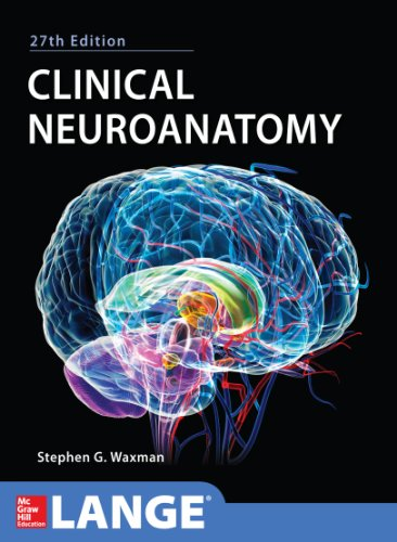 Clinical Neuroanatomy 27/E Pdf