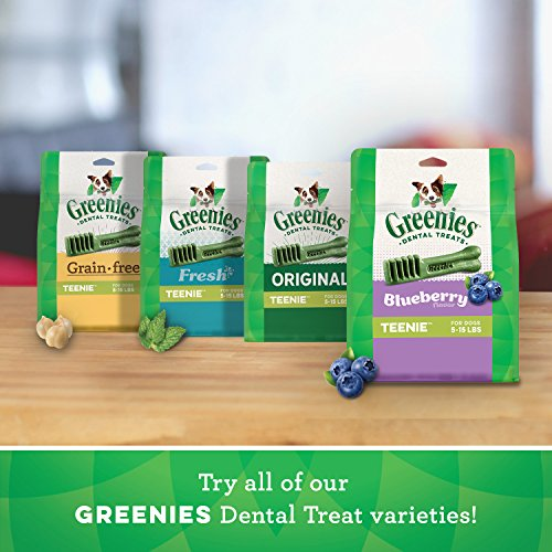 GREENIES Teenie Variety Pack with 12 oz. Original and 12 oz. Blue Berry Dental Dog Treats