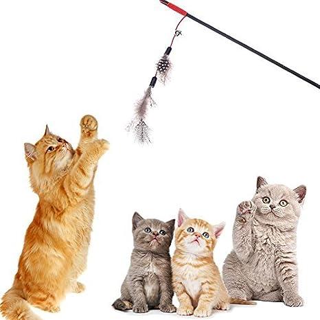 Broadroot Palo de plumas artificiales para gato, caña de pescar, juguetes interactivos para mascotas: Amazon.es: Productos para mascotas