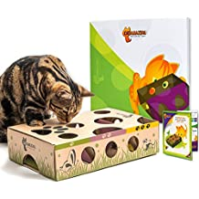 Cat Amazing Best Interactive Cat Toy Ever! Treat Maze & Puzzle Feeder for Cats