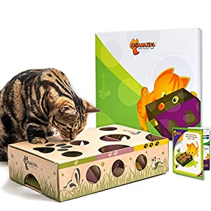 Cat Amazing - Best Cat Toy Ever! Interactive Treat Maze & Puzzle Feeder for Cats 10